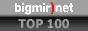 bigmir)net TOP 100